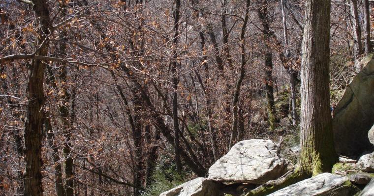 Klettern in Arcegno