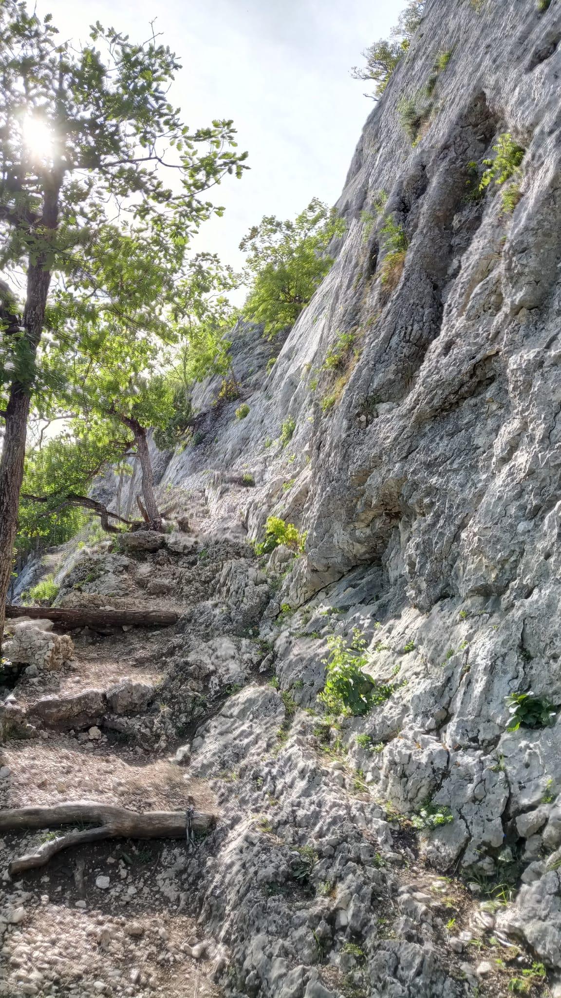 "Klettern in Orvin, Sektoren ""Nouvelle Nuance"" und ""No Limits"""
