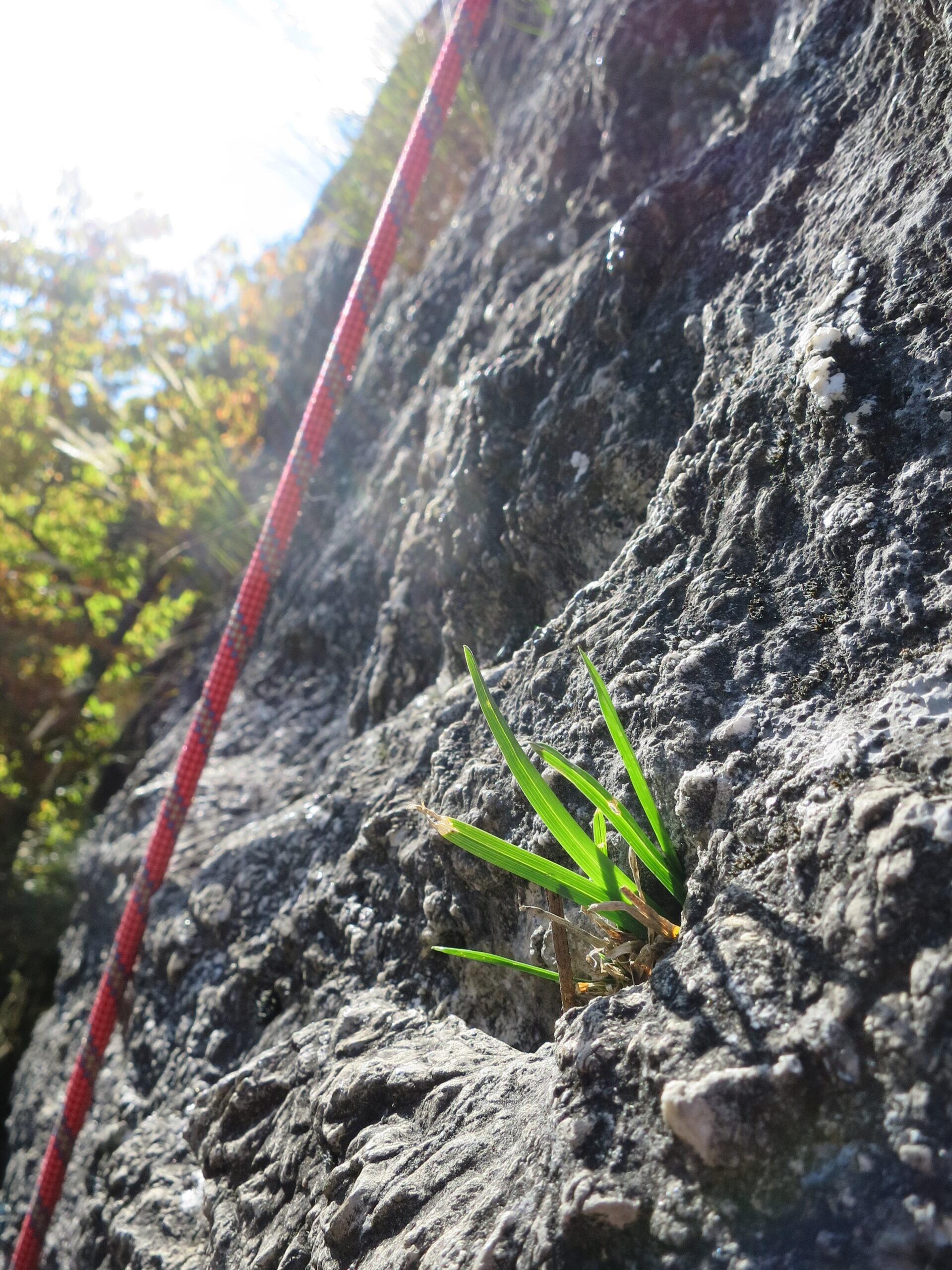 Klettern in Arbaz