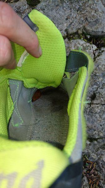 Schneckenbesuch beim Klettern